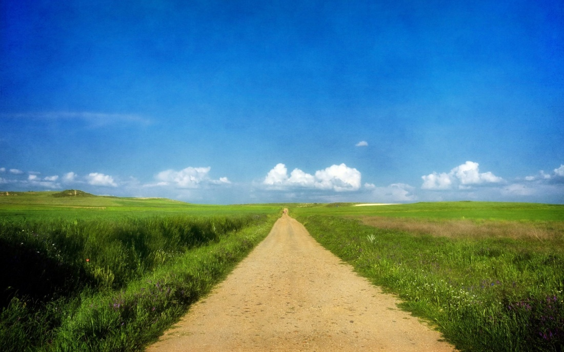 ws_beautiful_path__grass_fields_1920x1200.jpg